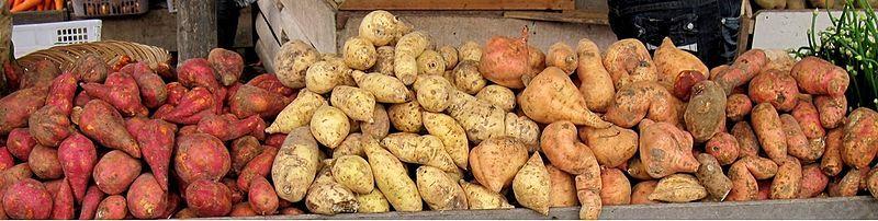 800px-Sweet_potatoes,_Padangpanjang