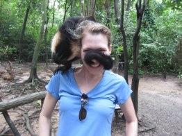 Monkey love in Honduras