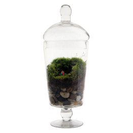 Grow old with you Terrarium.