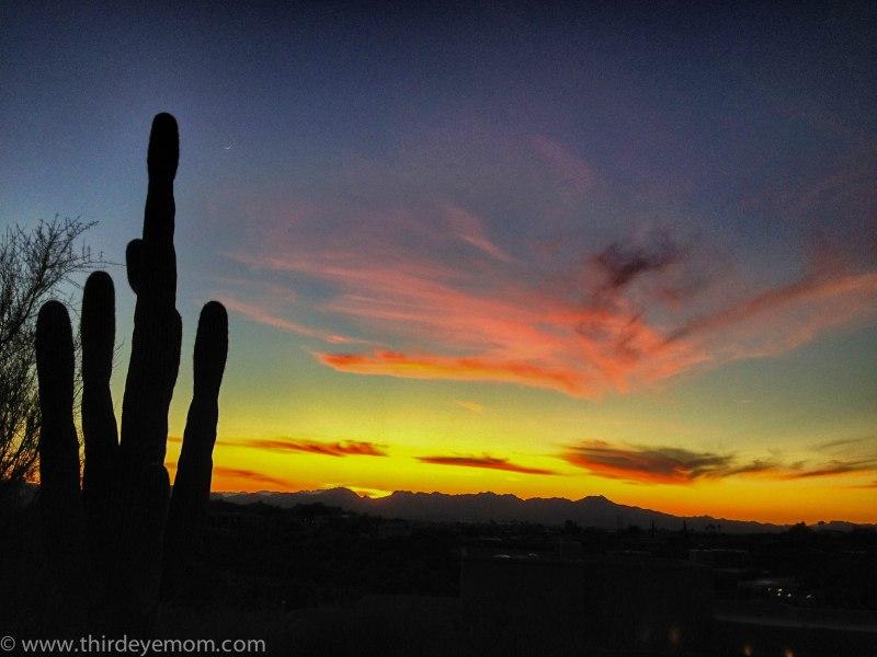 Sunset over Sahuaro