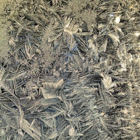 Frost on window Polar Vortex