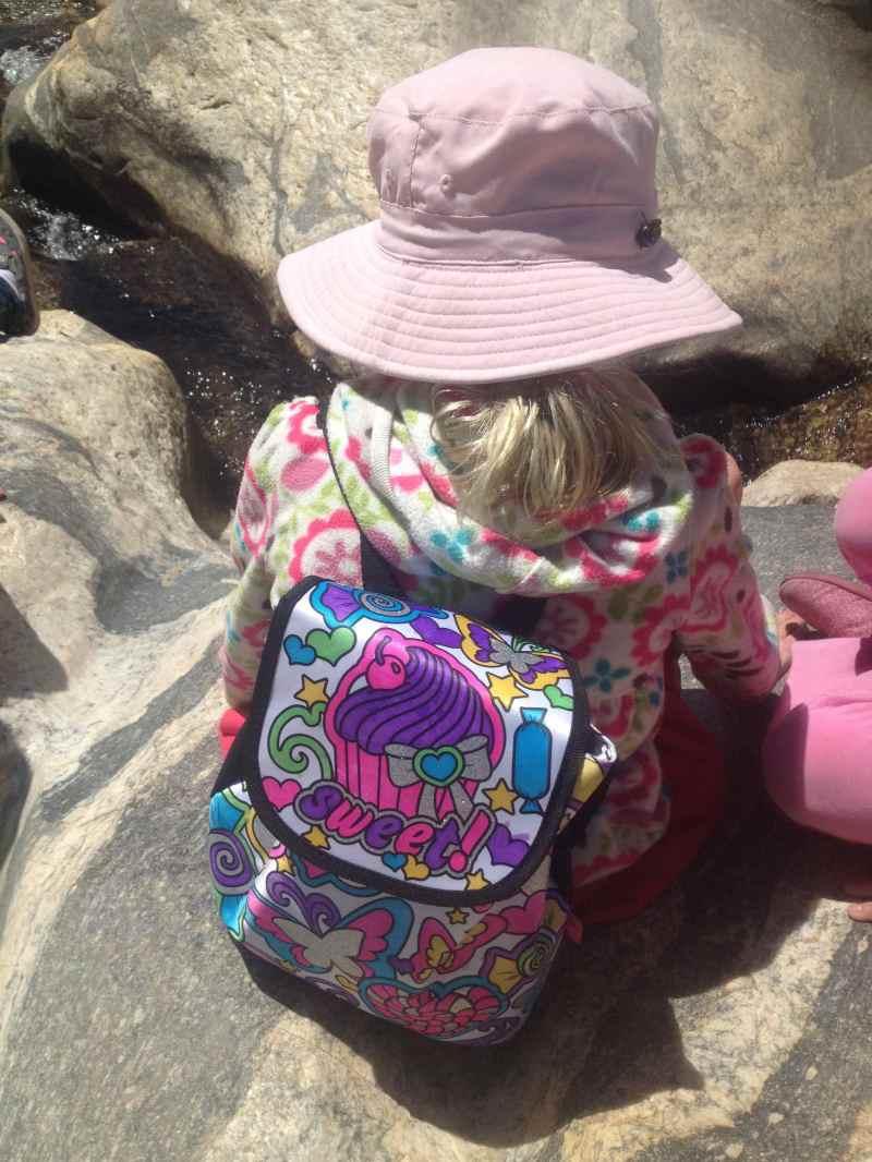 Enjoy a picnic and hike in Sabino Canyon