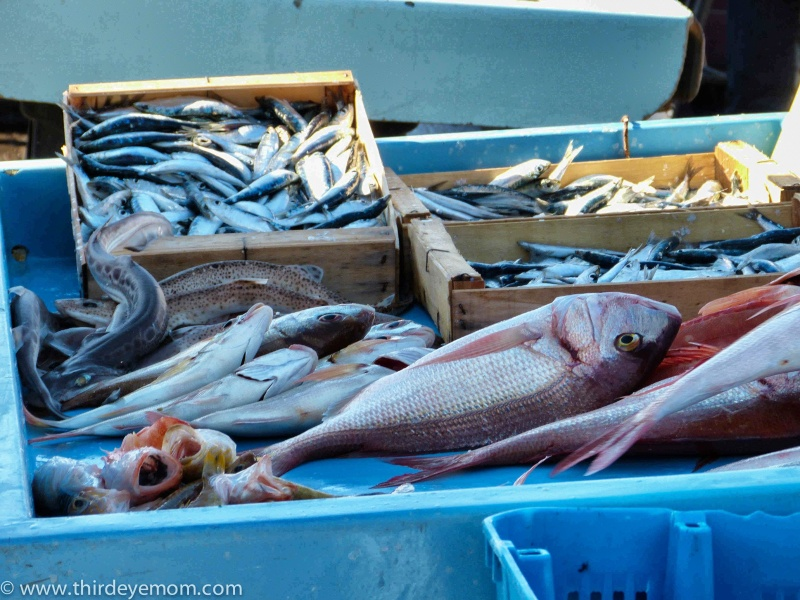 French Fish Market
