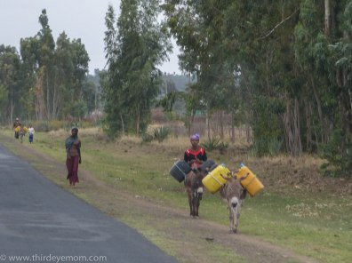 Carrying water in rural Ethiopia