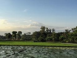 Mount Kilimanaro Moshi Tanzania