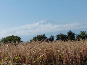 Mount Kilimanjaro Tanzania