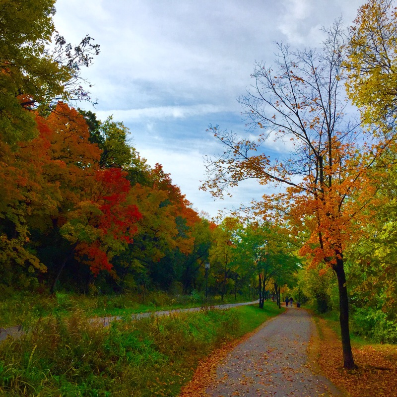 Lake Harriet Walking/Running Trail Minneapolis MN