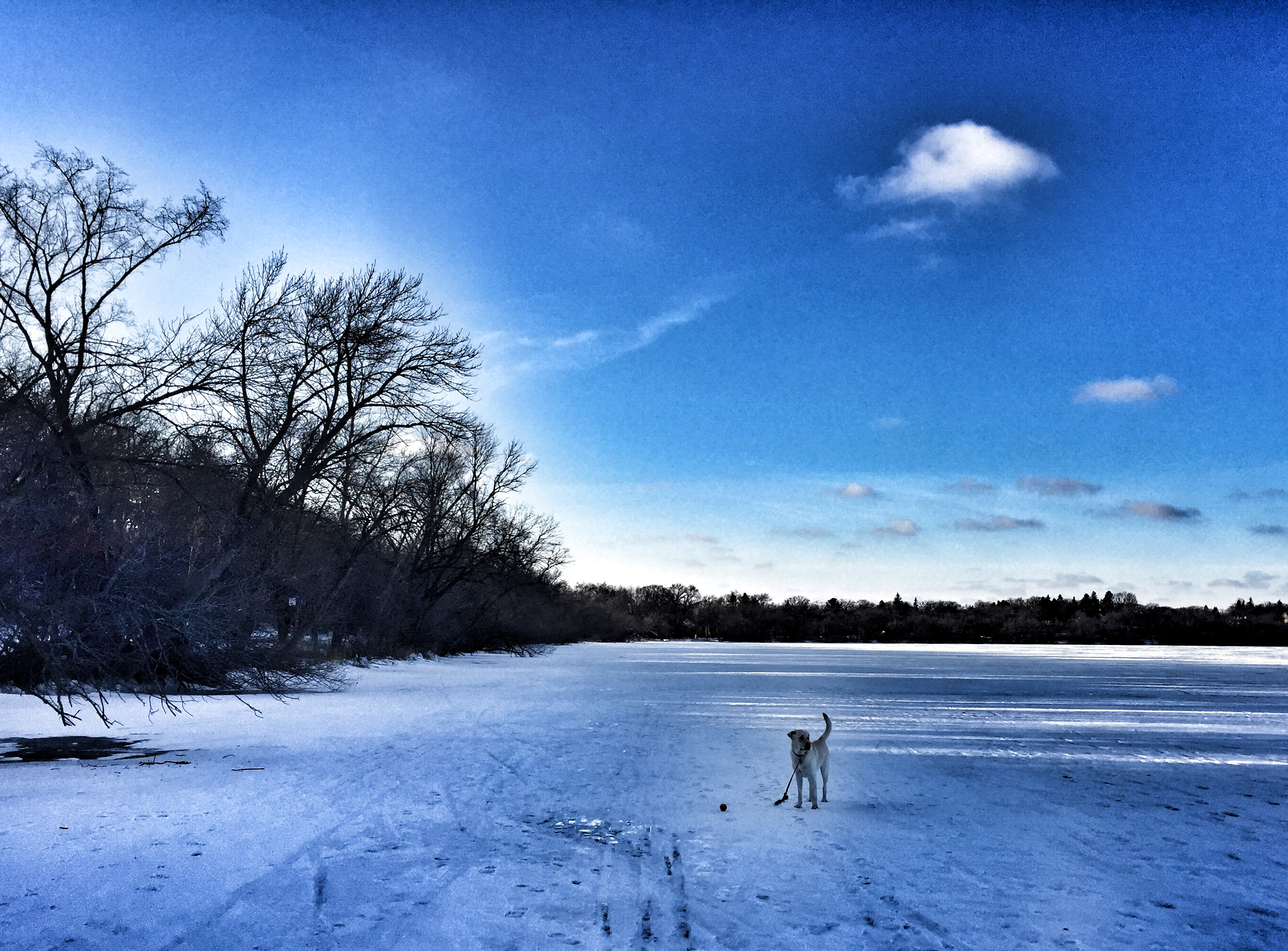 The Solitude of a Minnesota Winter | Thirdeyemom